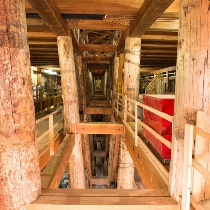 Por dentro da arca