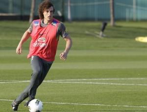 David Luiz na Seleção (Foto: Mowa Press)