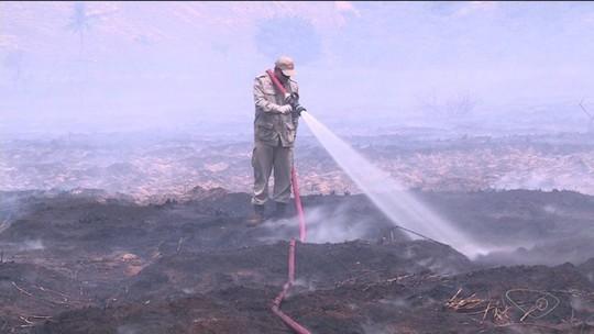 Novo incêndio em região de turfa atinge área de 5 campos de futebol