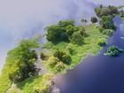 Baixada Maranhense é uma das riquezas naturais do Nordeste