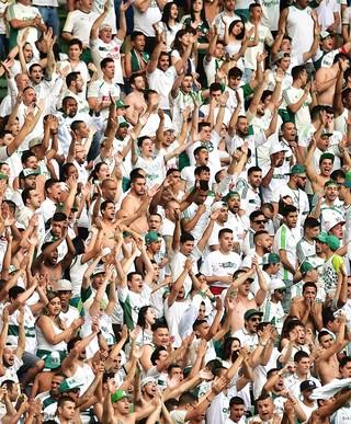 Torcida Palmeiras X Vitória (Foto: Marcos Ribolli)