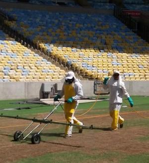 Empresa pulveriza gramado em tentativa de impedir avanço de lagartas no Maracanã (Foto: Divulgação)