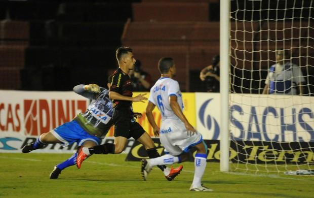 sport x avaí (Foto: Aldo Carneiro / Pernambuco Press)