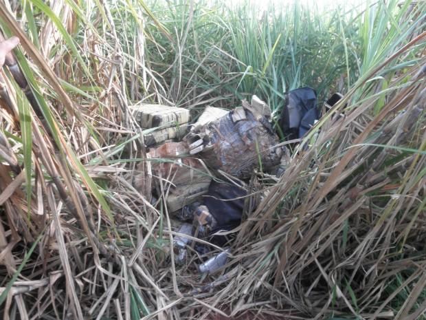 Mais de 830 kg de maconha estavam escondidos em um canavial (Foto: Lucas Pereira e Junior Andrade / Repórter na Rua)