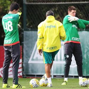 Vagner Vinicius Palmeiras (Foto: Cesar Greco/Ag. Palmeiras/Divulgação)