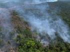 Brasil vai cumprir meta climática 'com folga', mas pode ir além, diz estudo