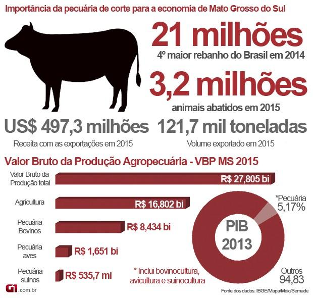 Infográfico sobre a importância da pecuária bovina para a economia de Mato Grosso do Sul (Foto: Anderson Viegas/Do G1 MS)