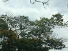 Feriado da Padroeira do Brasil será frio e nublado em MS, aponta Inmet