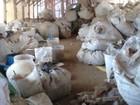Entre 3 e 4 ton de lixo hospitalar são encontradas em galpão de reciclagem