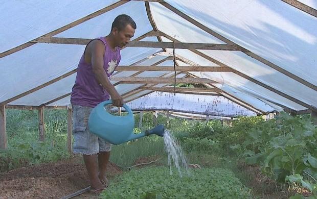 A horta comunitária garante o sustento de muitas famílias. (Foto: Acre TV)