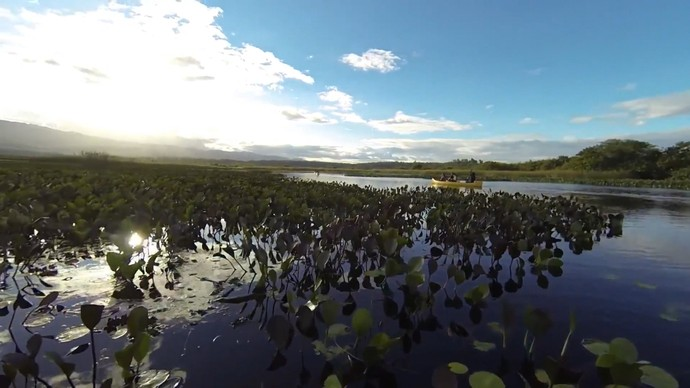Expedição por Marimbus mostra as belezas naturais do local (Foto: TV Bahia)