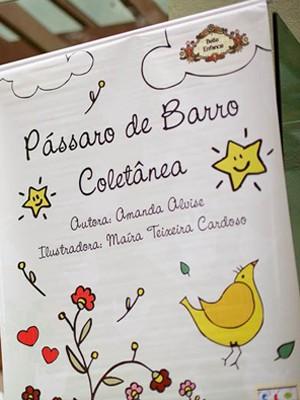 Campanha publicação de livro de escritora de Poços de Caldas durou 60 dias e arrecadou pouco mais de R$ 7 mil  (Foto: Ricardo Pereira)