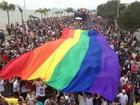 Conselho voltado para políticas públicas LGBT é criado em SC