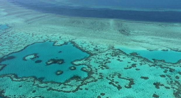 É o maior arrecife de coral del mundo. Estima-se que em seus 2.600 quilômetros de extensão haja mais de 1.800 espécies marinhas (Foto: BBC)