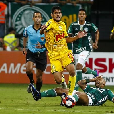 Zé Roberto Mirassol (Foto: Ale Vianna/Eleven/Estadão Conteúdo)