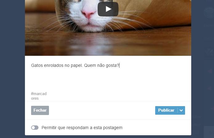 Insira descrição também em vídeos e áudios (Foto: Reprodução/Paulo Alves)