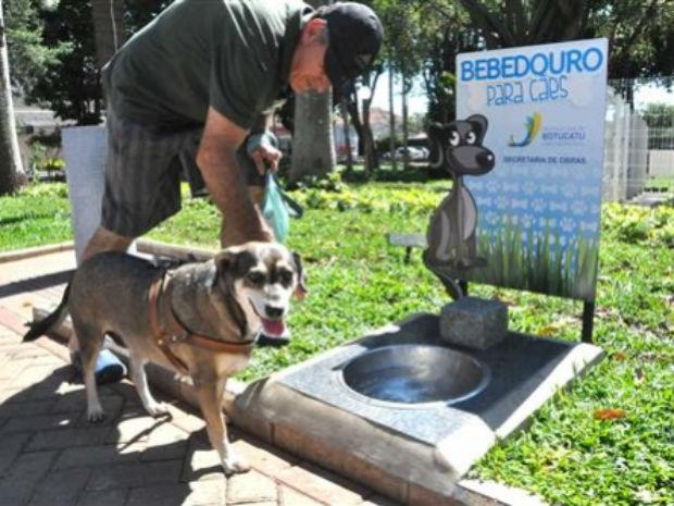 Moradores levam animais no centro histórico da cidade (Foto: Prefeitura de Botucatu/Divulgação)