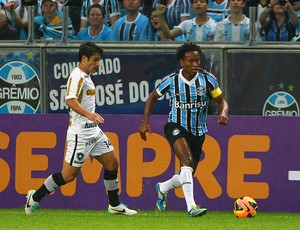 Zé Roberto na partida contra o Botafogo (Foto: Lucas Uebel/Grêmio FBPA)