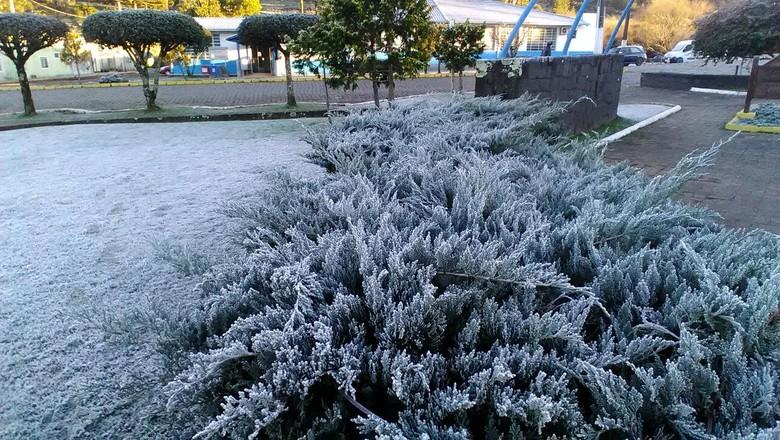 Vegetação congelada em Urupema, Santa Catarina (Foto: Joziéli Andrade)