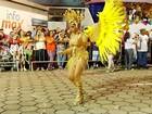 Escolas fazem bonito em desfile de Carnaval em Nova Friburgo, no RJ