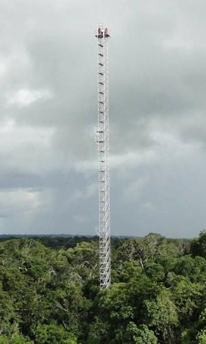 Torre de 82 metros na Amazônia que está gerando dados científicos desde janeiro de 2012, segundo Manzi (Foto: Divulgação/ATTO)