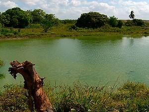 Lagoa fica dentro do terreno do CT do América, em Parnamirim (Foto: Reprodução/Inter TV Cabugi)