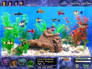 Fish tycon