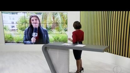 Serviço de castração móvel abre cadastramento em Petrópolis, no RJ