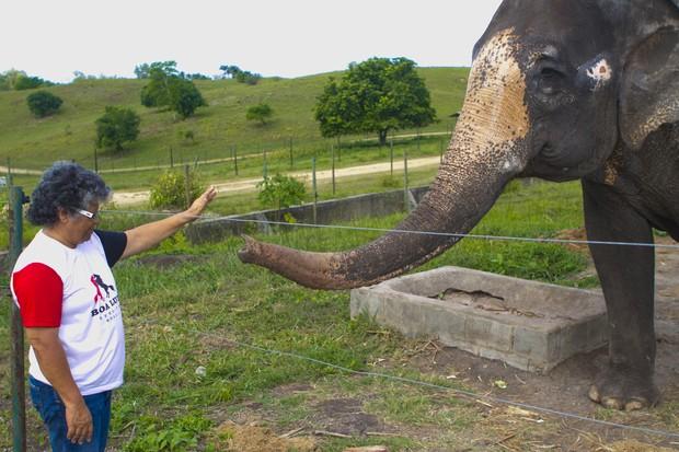 Elefante é um dos queridinhos de Marlene Mattos em hotel fazenda (Foto: Anderson Barros/EGO)