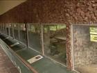 Polícia investiga roubo de cobras de zoológico de Goiânia