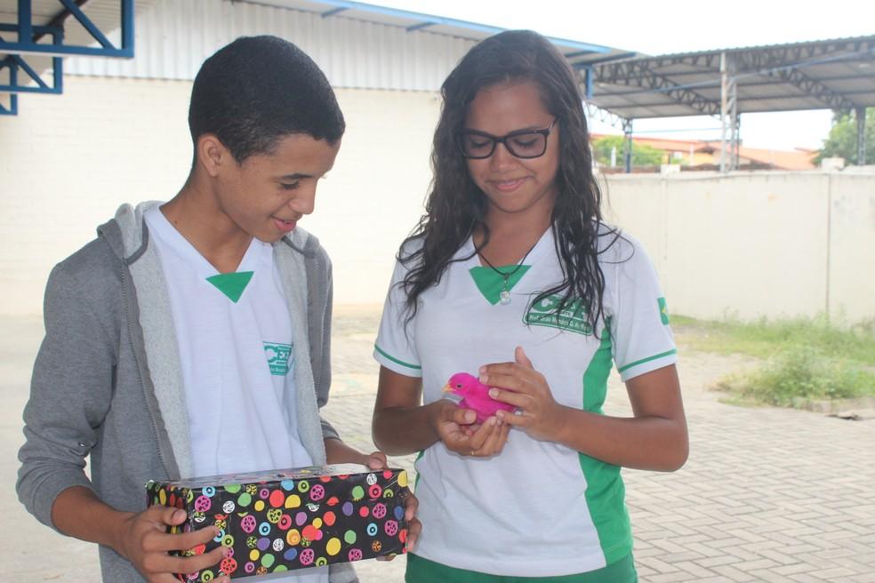 Alunos recebem pinto durante projeto em escola de Teresina (Foto: Gilcilene Araújo/G1 PI)