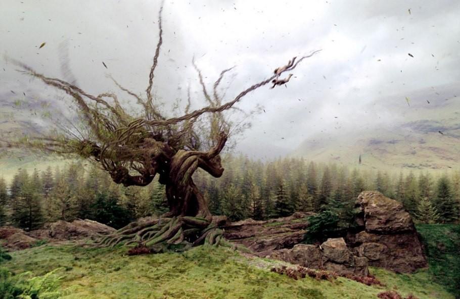 Salgueiro Lutador (Harry Potter) (Foto: Divulgação)