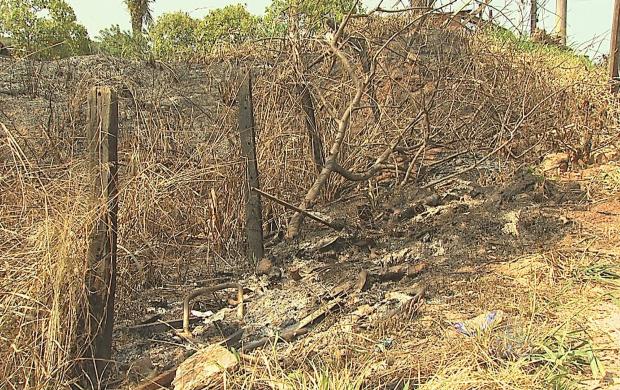 Focos de queimadas aumentam nesta época do ano (Foto: Bom Dia Amazônia)