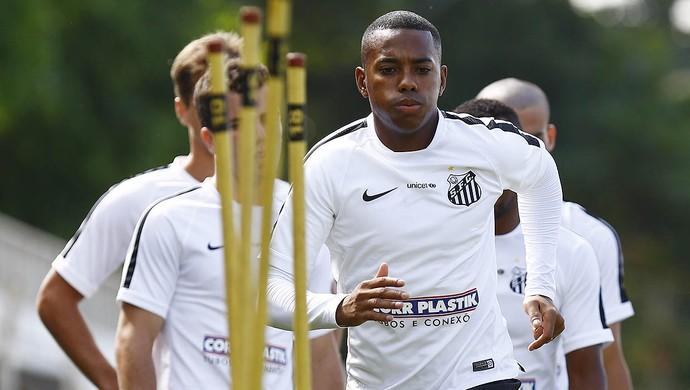 Robinho, Santos (Foto: Ricardo Saibun/Santos FC)