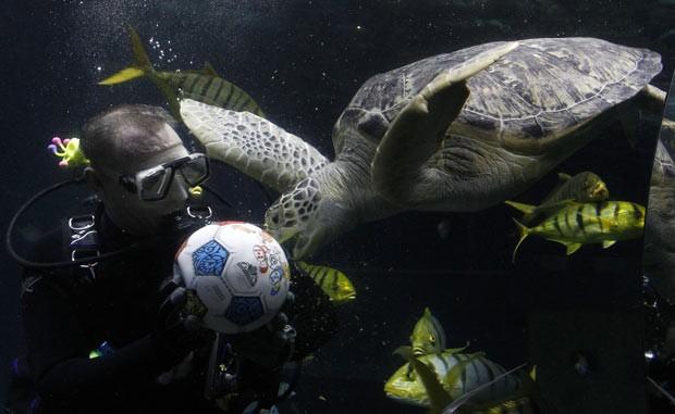 """A """"bate-bola subaquático"""" ocorreu como prévia da final da Liga dos Campeões da Europa, que vai acontecer na cidade alemã neste sábado. A partida será entre o Bayen de Munique e o Chelsea. (Foto: Michaela Rehle/Reuters)"""