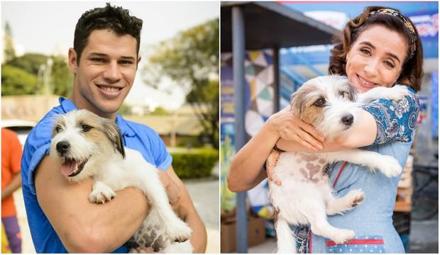 José Loreto e Marisa Orth com o cãozinho Guti (Foto: Globo)
