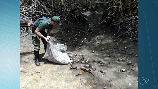 Polícia apreende 500 caranguejos com venda proibida no Centro de Vitória