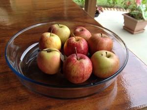 Passo 1: selecione maçãs pequenas (Foto: Luíza Fregapani/ G1 SC)