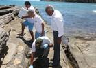 Praia de Búzios é interditada após banhistas passarem mal (Ronald Pantoja / Prefeitura de Búzios)