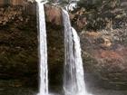 Pato celebra chegada de ano novo com foto em cachoeira: 'Abençoado'