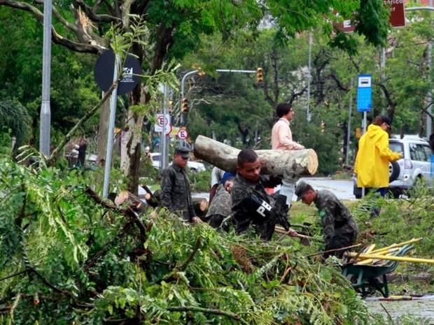 Militares do Exército também ajudam na retirada das árvores em Porto Alegre  (Foto: Divulgação / Ceic - Metroclima )