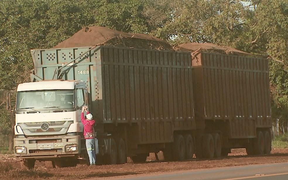 Desde 1º de junho, transporte de cana-de-açúcar devem ser feito com lonas nos caminhões (Foto: Reprodução/EPTV)