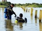Mais 13 ataques de piranhas são confirmados nas praias de Palmas