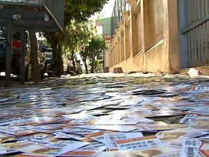 SAntinhos espalhados em calçada provocaram a queda de idosa em São Carlos (Foto: Marlon Tavoni/ EPTV)