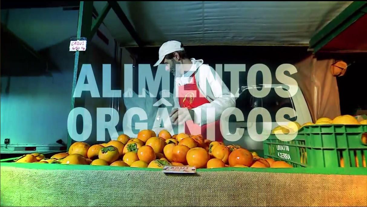 Equipe de reportagem percorreu diversos pontos de cultivo dos produtos orgânicos (Foto: Reprodução / Rede Globo)