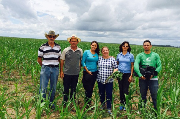 Programa vai mostrar como andam os campos de soja e milho do Piauí (Foto: Rede Clube)