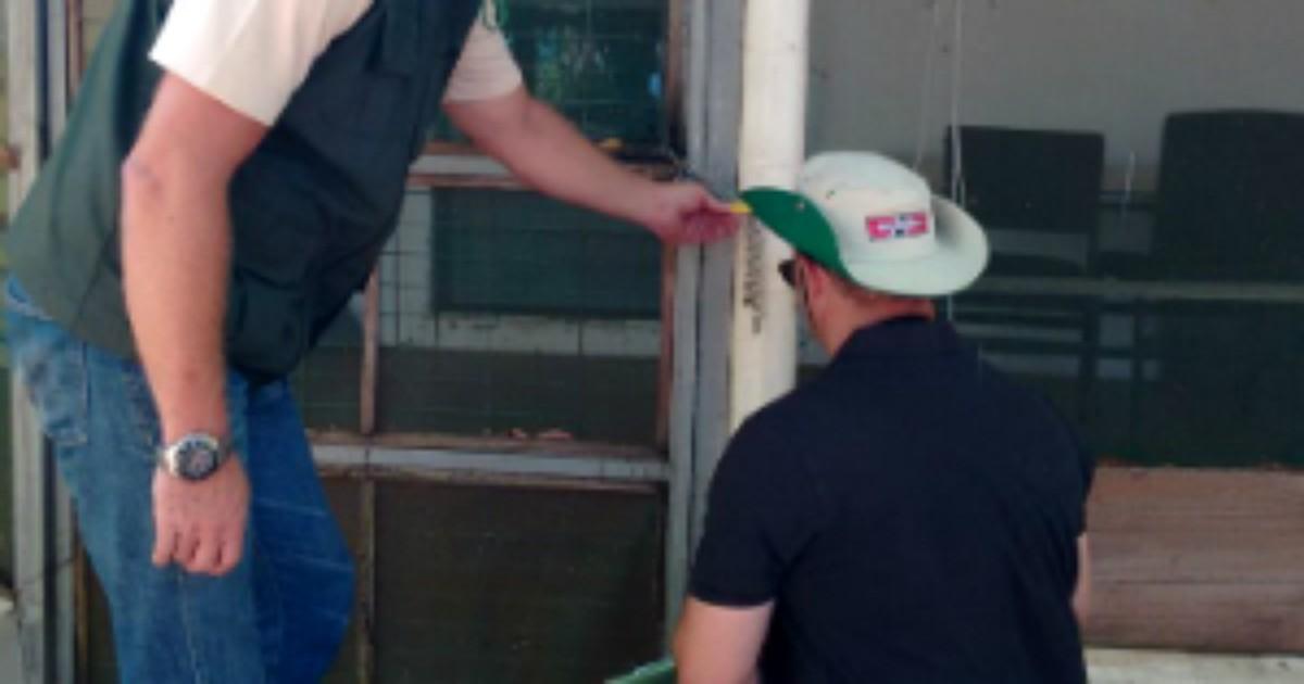 MPF e IAP lacram imóveis irregulares no Parque Nacional de Ilha ... - Globo.com