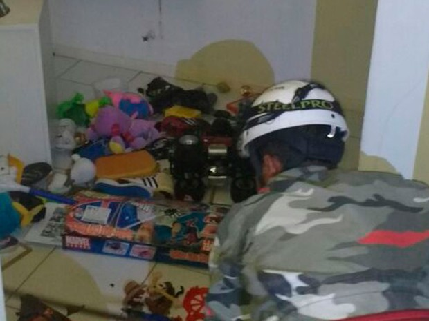 Cobra foi encontrado entre brinquedos de residência (Foto: AL.BV.Muller / Arquivo Pessoal)