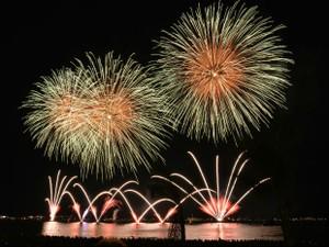 A queima de fogos de artifício causa irritação e estresse aos pets (Foto: Divulgação)