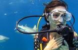 Isis Valverde encara desafio e nada com tubarões; vídeo
